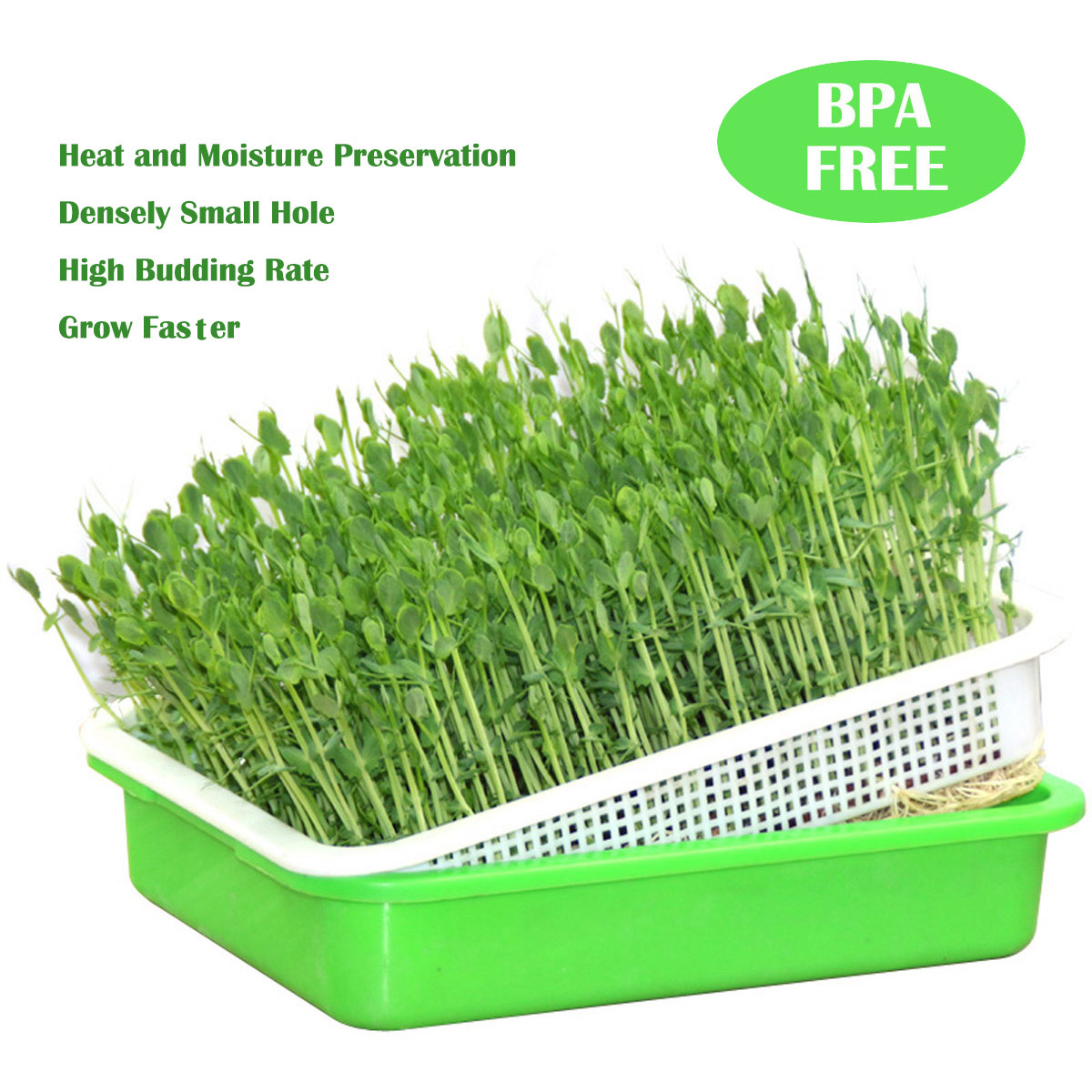 Tribest Sproutman/'s Soil-Free Wheatgrass Grower Sprouter Tray System